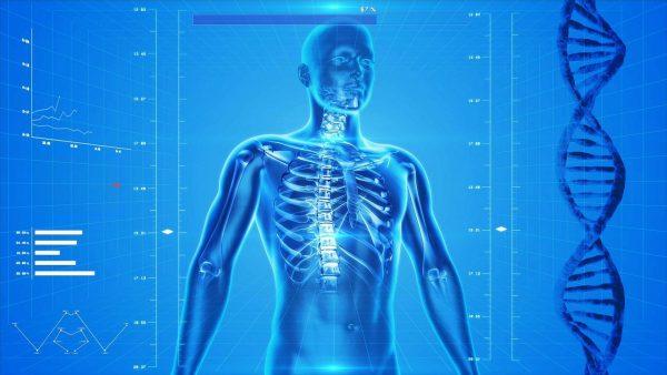 afbeelding lichaam